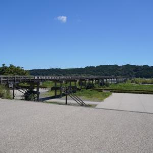 島田・蓬莱橋 897.4茶屋のかき氷2021