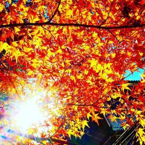 秋深まりて
