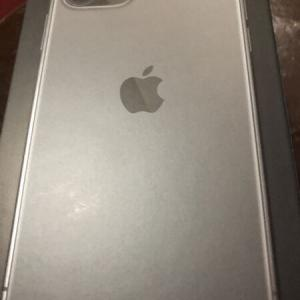 アップル12が届きました