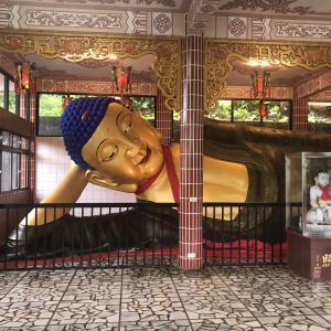 台北日帰りで漁港海鮮堪能して、世界奇界遺産「金剛宮」に行き、淡水の朝日夫婦カキ氷で映えてきた。