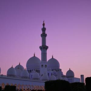 The Sheikh Zayed Grand Mosque جامع الشيخ زايد