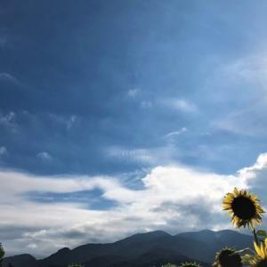 蒼空は・・結弦色だわ! Yuzu-blue Sky