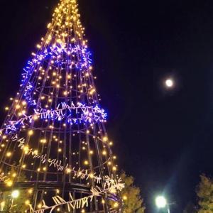 夜空に願いを・・・ Wishing upon the moon