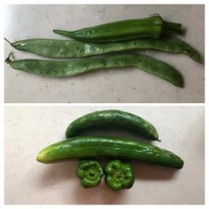 頂いた野菜~