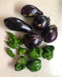 採れた野菜