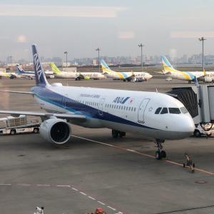 札幌(千歳)へエコノミークラス+プレミアムクラスで往復(29,768PPに)