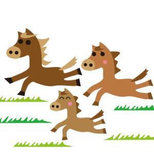 【調教注目馬(先週の回顧)】10/14(月) 東京・京都競馬 先週イチの好仕上がり新馬レシステンシアが好パフォーマンスV
