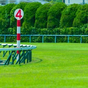【高松宮記念 2020予想】追い切り・ラップ適性・レース傾向考察 & 各馬評価まとめ / 忘れ物を取りに......