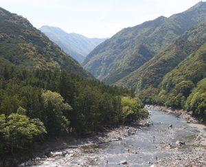 宮川にアユ釣りに出かけた男性が川で遺体で見つかる  岐阜・飛騨市