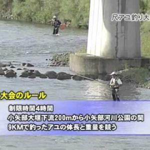 尺アユ狙う 小矢部川で釣り大会