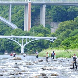 【相模川】鮎試し釣りも放流遅れで釣果伸びず