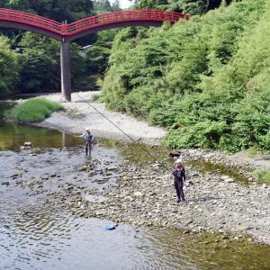 箱根でアユ大量死 解禁目前、今シーズンの釣りピンチ