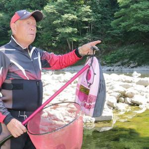 「飛騨のあばれ鮎」ブランド化 一回り大きく「力強い」友釣り名人、室田さん