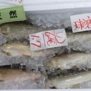「アユの塩焼き、来季こそ」 熊本豪雨で被災、坂本町の食堂 運営住民、懸命の復旧