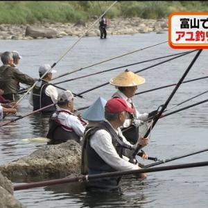 富山は天然アユの宝庫 長雨でも釣果上々、全国から釣り人続々