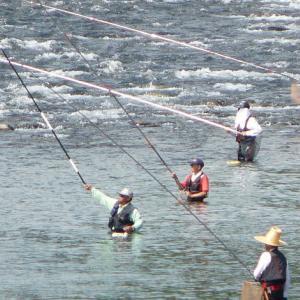 アユ釣りの公務員男性流され 引き上げられるも死亡 岐阜・本巣市の根尾川
