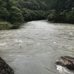 5月27日【古座川】支流小川の様子
