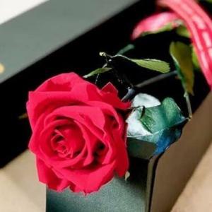 【うんちく話】6月の花嫁「ジューンブライド」