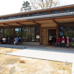 2019年春の京都・京都御苑の壁紙その3(計17枚)