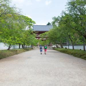 2019年新緑の京都・醍醐寺の壁紙その3(計39枚)