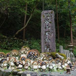 2019年新緑の京都・狸谷山不動院の壁紙(計43枚)