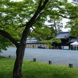 2019年新緑の京都・京都御苑の壁紙その1(計32枚)