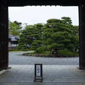 2019年新緑の京都・閑院邸宮跡の壁紙(計8枚)