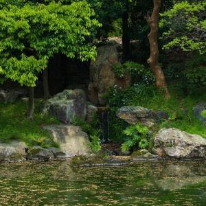 2019年新緑の京都・京都御苑の壁紙その2(計19枚)