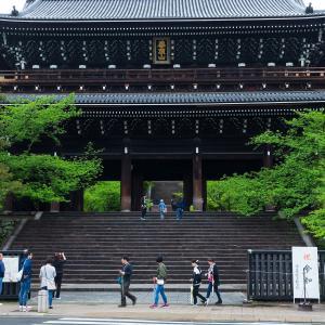 2019年新緑の京都・得浄明院の壁紙(計18枚)