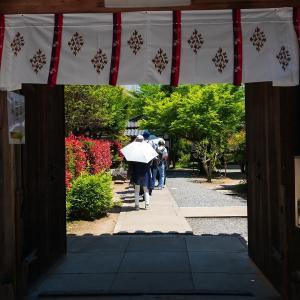 2019年新緑の京都・勧修寺の壁紙(計41枚)