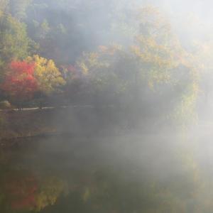 2019年紅葉の京都・小滝池の壁紙(計30枚)