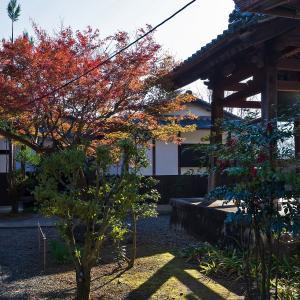 2019年紅葉の京都・安祥寺の壁紙(計29枚)
