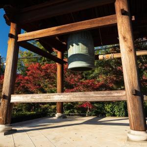 2019年紅葉の京都・高台寺の壁紙(計26枚)