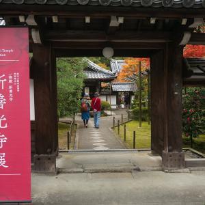 2019年紅葉の京都・新善行寺の壁紙(計22枚)