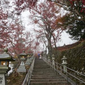 2019年紅葉の京都・桑田神社の壁紙(計19枚)