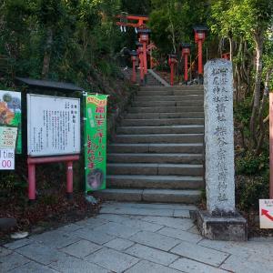 2019年紅葉の京都・嵐山モンキーパークの壁紙(計41枚)