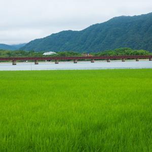 2020年夏の京都・由良川橋梁の壁紙(計4枚)