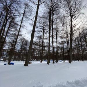雪中ソロキャンプデビュー♪