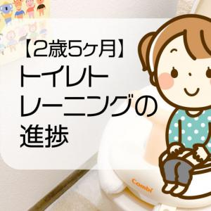 【2歳5ヶ月】トイレトレーニングの進捗