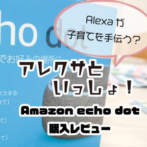 アレクサといっしょ!〜Amazon Echo dot購入レビュー〜