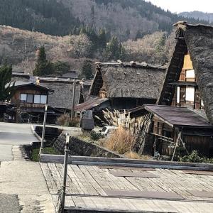 今年は、白川郷にも雪が無いらしい。