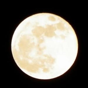 今夜は満月!新しい時代が動き出す♪
