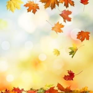 《秋分・特別企画》軽やかにクリアリングし、豊穣を享受する!【遠隔グループヒーリング】 お申込み受付中!