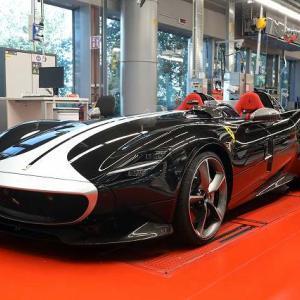 これらが生産再開後最初に生まれたフェラーリ達。かわいいね! 今日から完全復活!