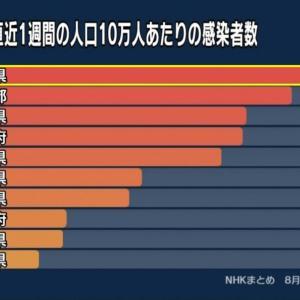 沖縄 県内での病床利用率は129.9%