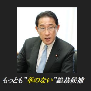消費税「下げるべきでない」 自民・岸田文雄政調会長
