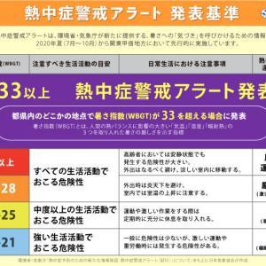 初の「熱中症警戒アラート」、東京・千葉・茨城に発令…きょう都心で36度予想