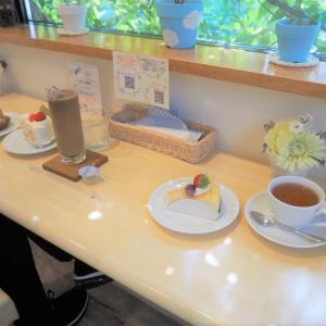 【上田市真田町】パティスリー プランソレイユ ~緑のカフェテラスがおすすめ~