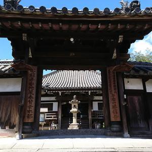 ★わがこ旅★わがこが無事に生まれたお礼参り【奈良県奈良市】