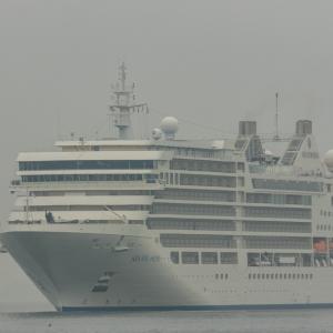 10月9日 シルバーミューズ寄港中止